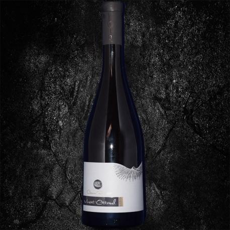 Sauvignon Blanc 2016 Demisec